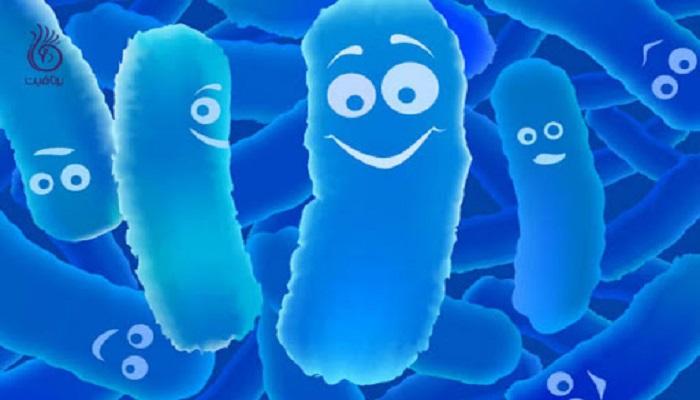 مواد پروبیوتیک و باکتری ها در دهان